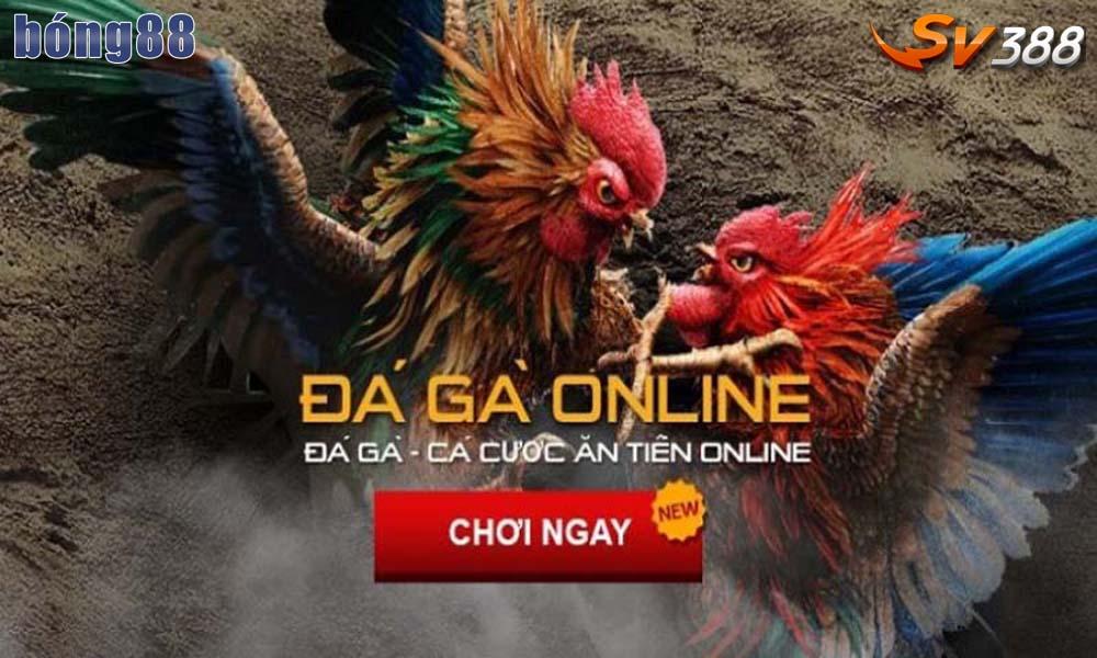 Sử dụng chatbox trên website nhà cái